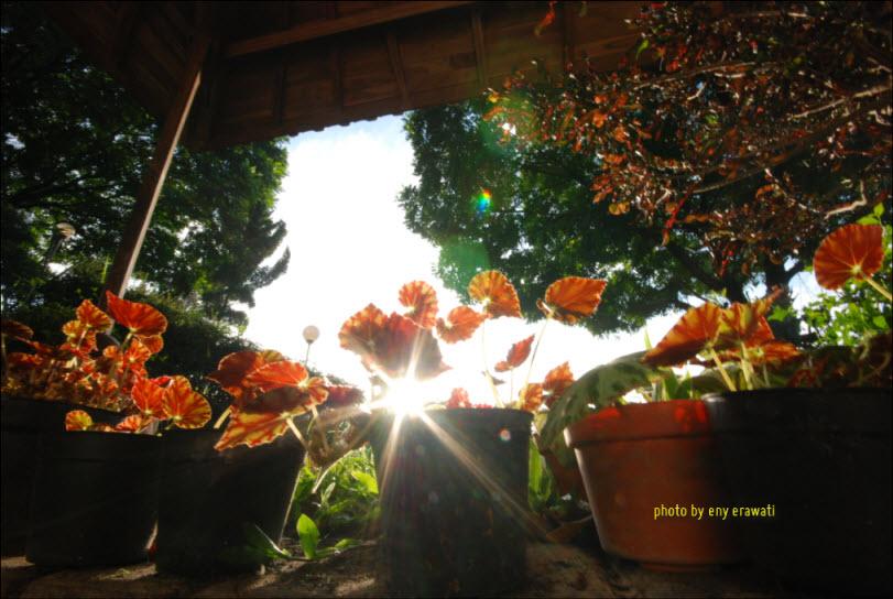 enyerawati_11-11-2011